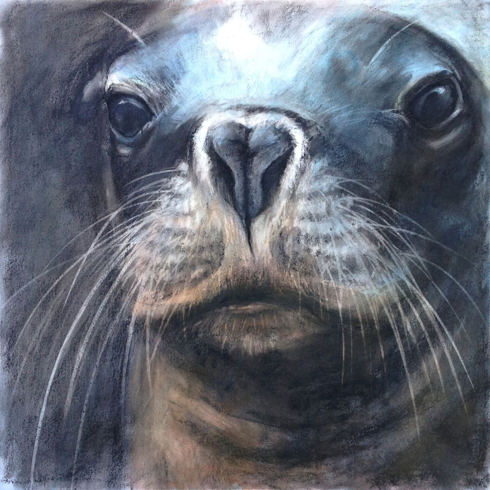 Animal Portraits Workshop at Art Studios Co-operative
